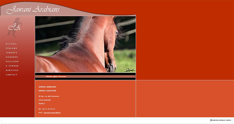 Site internet de chevaux pur sang Jawani Arabians